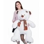 Медведь Тони с шарфом В120 белый  МТШ6531